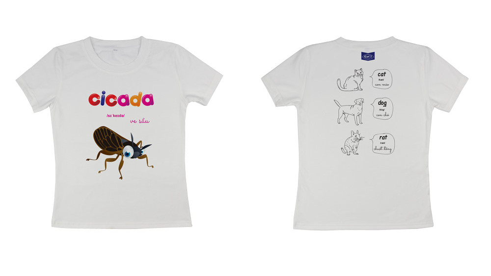 Cicada ( ve sầu )